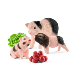 Mini pig with piglets